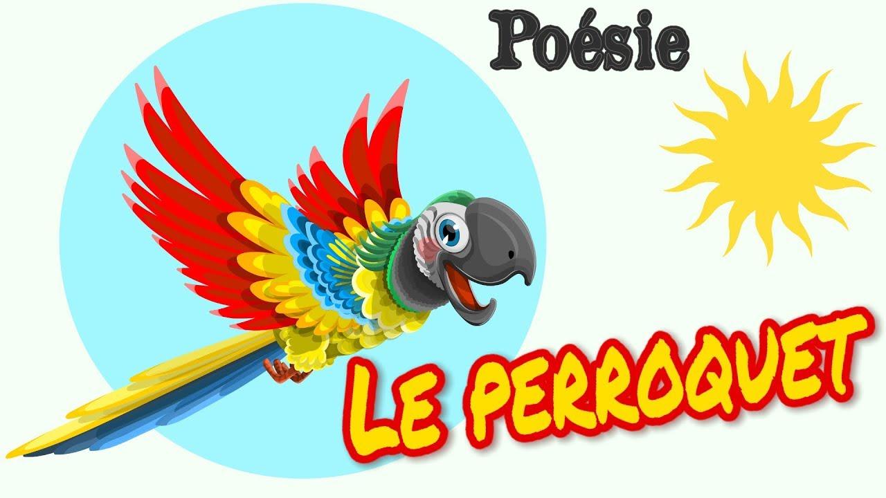 Po sie le perroquet de jean hugues malineau youtube - Dessiner un perroquet ...