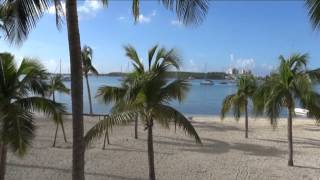 SAINT MARTIN LES VACANCES SOUS LES TROPIQUES   YOUR HOLIDAYS IN THE FRENCH WEST INDIES