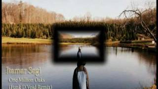 Itamar Sagi - One Milion Oaks (Funk D