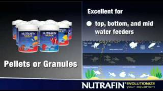 Nutrafin Aquarium Products