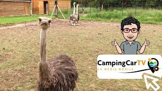 JT en Camping-Car N°94 - Pays d'Auge, y'a de la pomme !
