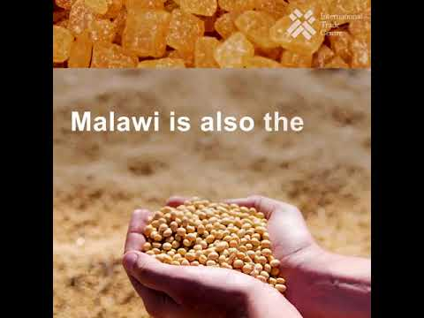Malawi's export potential and trade challenges