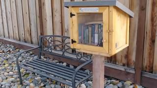 Neighborhood Outdoor Library in San Jose, California