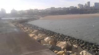 "Dig ,plaja  Modern 1 ianuarie ""17"
