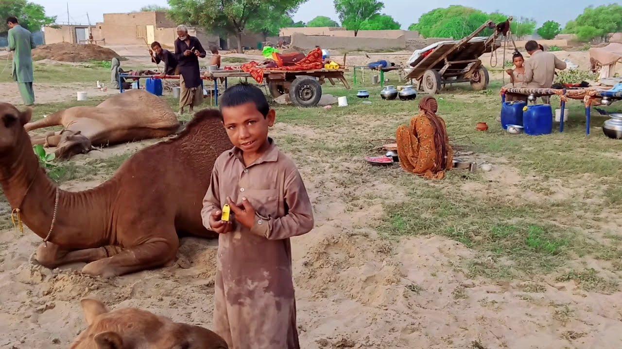 Pakistan Desert Village life | Cholistan Village Life Style | Desert People Life & Routine
