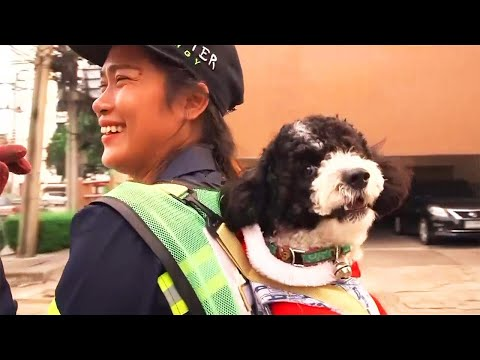 Street Cleaner Wears Dog on Her Back While She Works