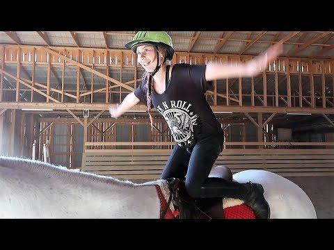 HORSE STUNTS ON OUR LEASE HORSE! Day 272 (10/01/17)
