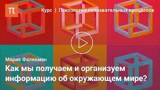 видео Особенности памяти как психологического процесса