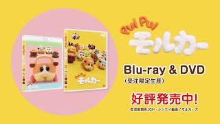 『PUI PUI モルカー』Blu-ray&DVD好評発売中
