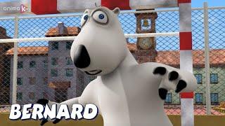 Бернард Медведь мини футбол И БОЛЬШЕ Мультфильмы для детей Полные эпизоды