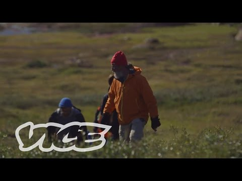 Polar Bear Man Returns to the Arctic: VICE Reports (Part 3)