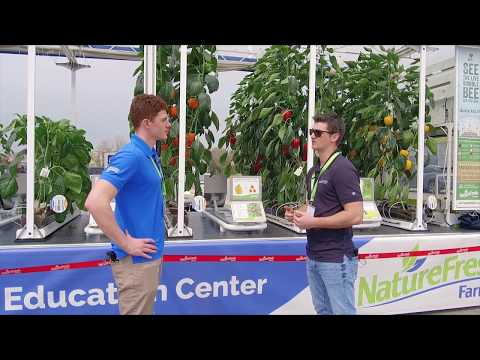 Driving The Future Of Fresh With The Greenhouse Education Center