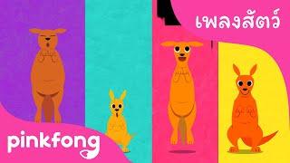 จิงโจ้ | เพลงสัตว์ | การ์ตูน | เพลงเด็๋กน้อย | พิ้งฟอง(Pinkfong) เพลงและนิทาน