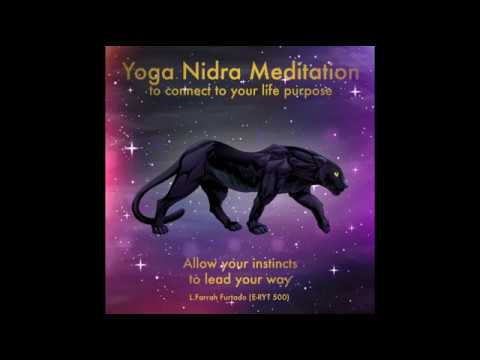Nidra Meditation-Connect to your Life Purpose-Allow your Instincts to Lead your Way!
