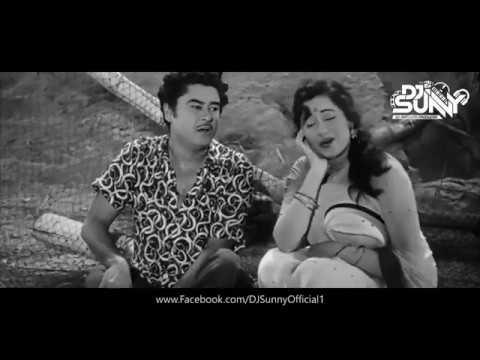 Haal Kaisa Hai Jaanab Ka (Remix) Promo - DJ Sunny