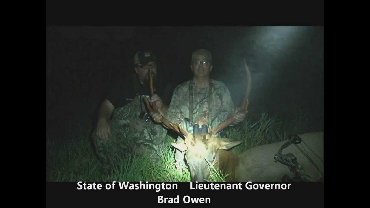 Blacktail Deer Hunting : Guided Elk Hunts : Olympic Mountain