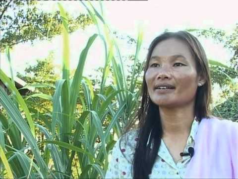 (ILO) Migration Alternatives: Village Development Funds in Lao PDR