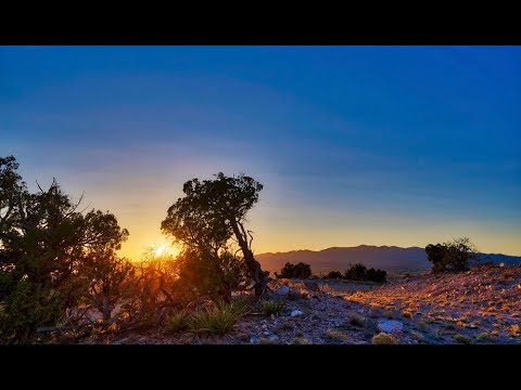New Mexico Land For Sale: 20 Acres in Mountainair; Drone Video