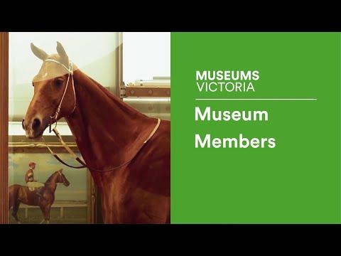 Museum Members