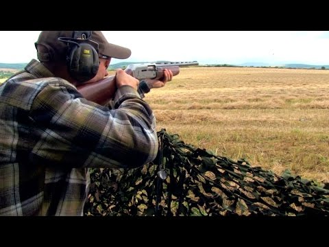 The Shooting Show – pigeon shooting the Irish way