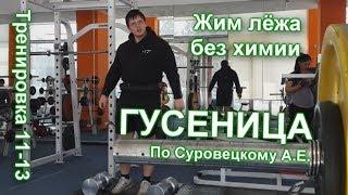ГУСЕНИЦА по Суровецкому А.Е. Видео: 5