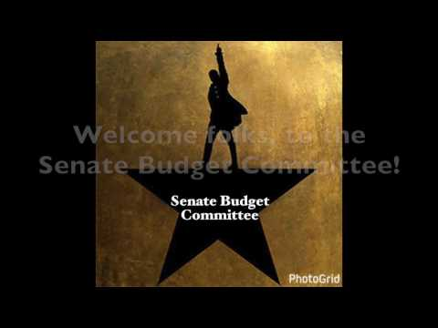 Senate Budget Committee Song