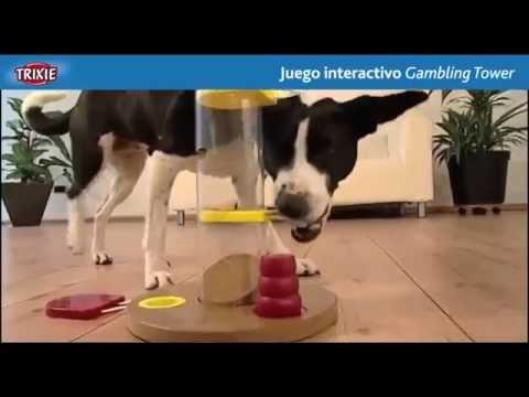 Juego Interactivo Gambling Tower Dog Activity Trixie Para El