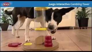 Juego interactivo Gambling Tower Dog Activity Trixie para el desarrollo de la inteligencia del perro