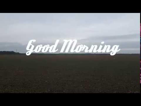 Guten Morgen Fixel Der Bussi 18