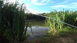 Рыбалка на поплавок летом Сыр кукуруза