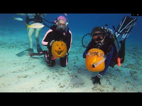 Amanda McGraw - WATCH: Scuba Divers Carve Pumpkins Underwater!