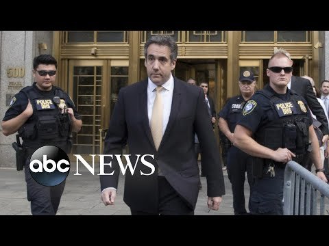 Michael Cohen pleads guilty, strikes plea deal