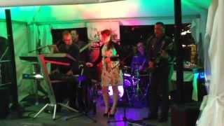Kranjci (Krantz live band / Trio Kranjc) - Dancing mix covers