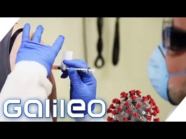 Direkt impfen lassen? Wie sicher ist der Corona-Impfstoff? | Galileo | ProSieben