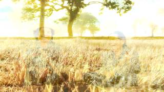 เพลงพิณ - มงคล อุทก