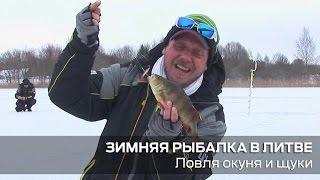 Зимняя рыбалка в Литве - ловля щуки и окуня.