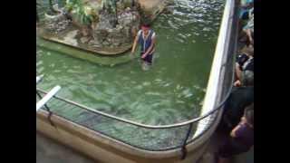サンプラン象園にて、バンコクから近くの象園です。ワニと戦う若者の映...