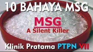 10 Bahaya MSG | Klinik Pratama PTPN VII