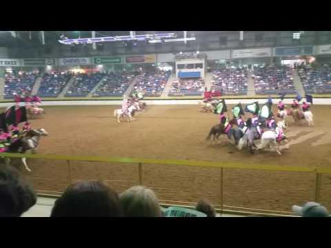 Precisionettes #Horsecapades 2016