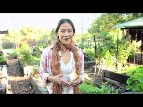 What's the deal with growing your own food?