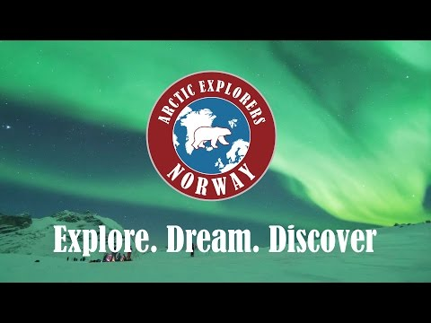 Arctic Explorers Norway |  Northern Lights Tours
