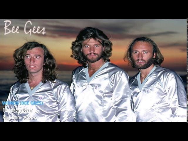 Words (Bee Gees) - Flugelhorn Cover