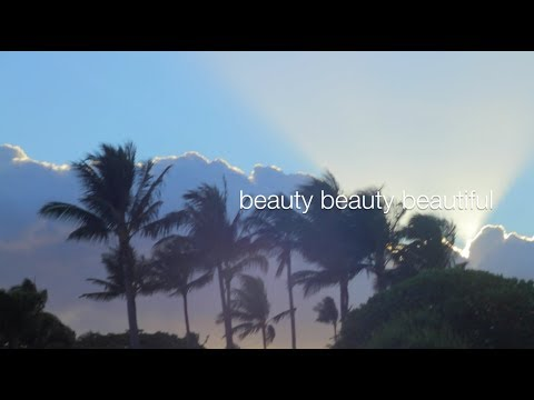 "Beauty Beauty - David Brymer (Official Lyric Video) ""Lindo És"""