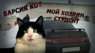 Барсик Кот - Мой хозяин - студент