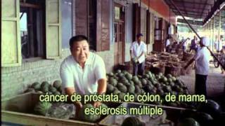 Forks Over Knives movie trailer subtitulado español.mpg