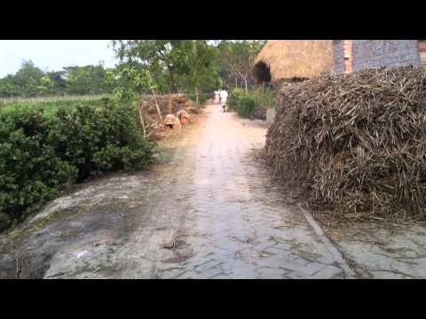 Drive to village in Sunderban Islands, South 24 Parganas, India