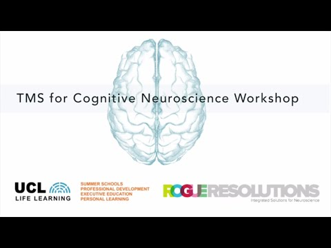 TMS Workshop for Cognitive Neuroscience