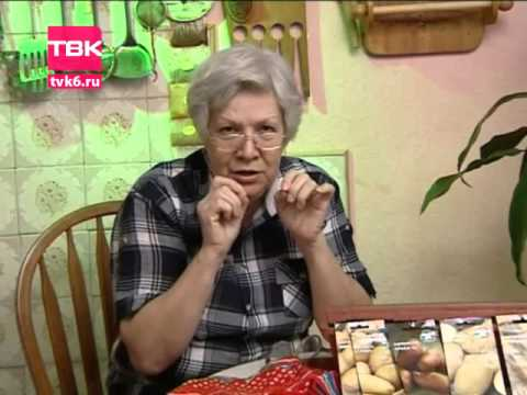 ТВК – новости Красноярска, Красноярского края, России и мира