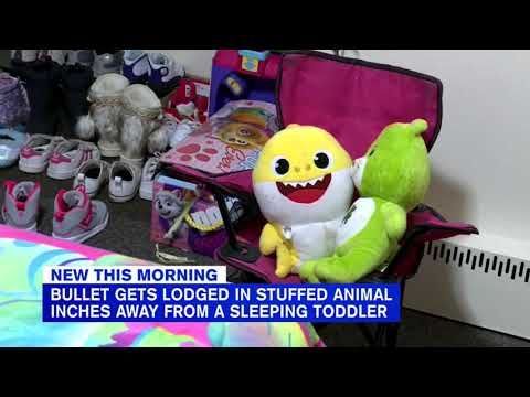 Ron Verb - Stray Bullet Misses Toddler, Hits Baby Shark Toy