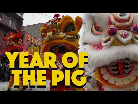 CHINESE NEW YEAR CHICAGO 2019 PARADE/VLOG